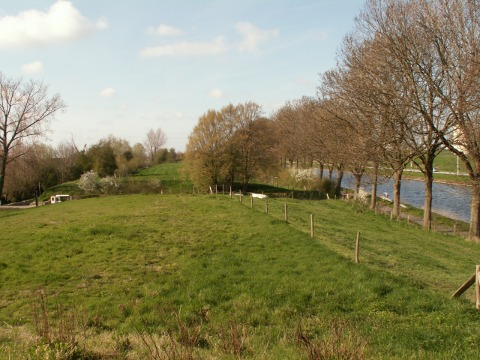 Along the canal bank