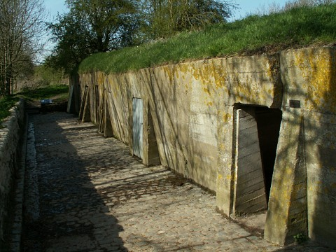 The Field Dressing Station