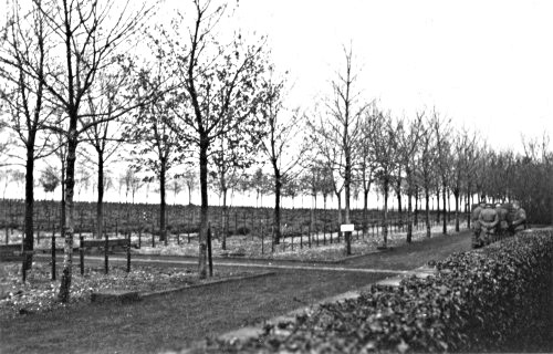 German soldiers at the cemetery