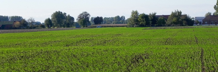 Looking towards Fromelles