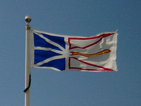 The Newfoundland Flag