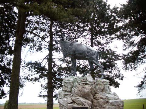 Newfoundland Regiment Caribou at Guedecourt