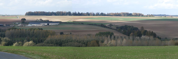 From the area of the Ulster Tower